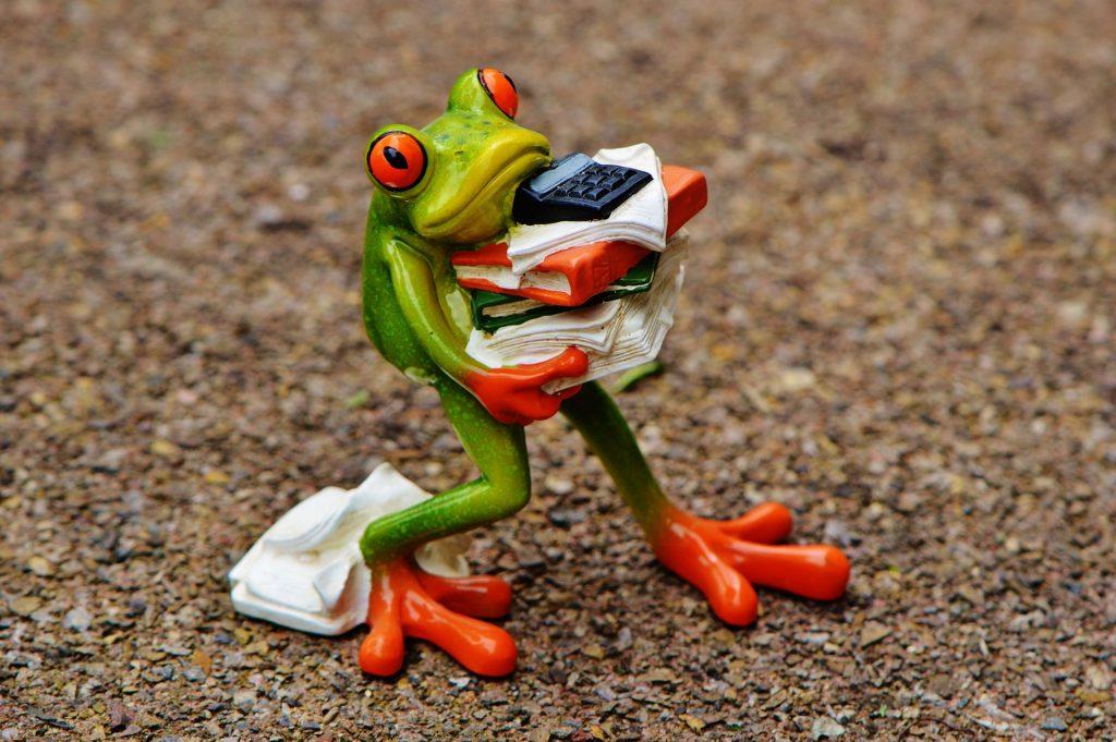 Figurka żabki trzymająca dokumenty